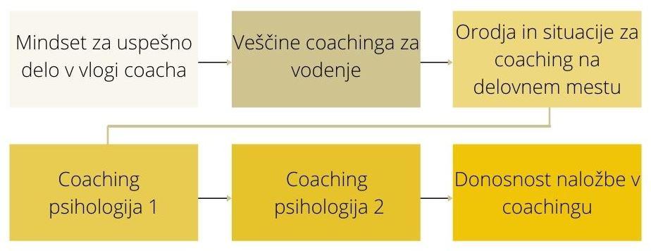 Treningi na programu Coaching psihologija_Uporabna psihologija